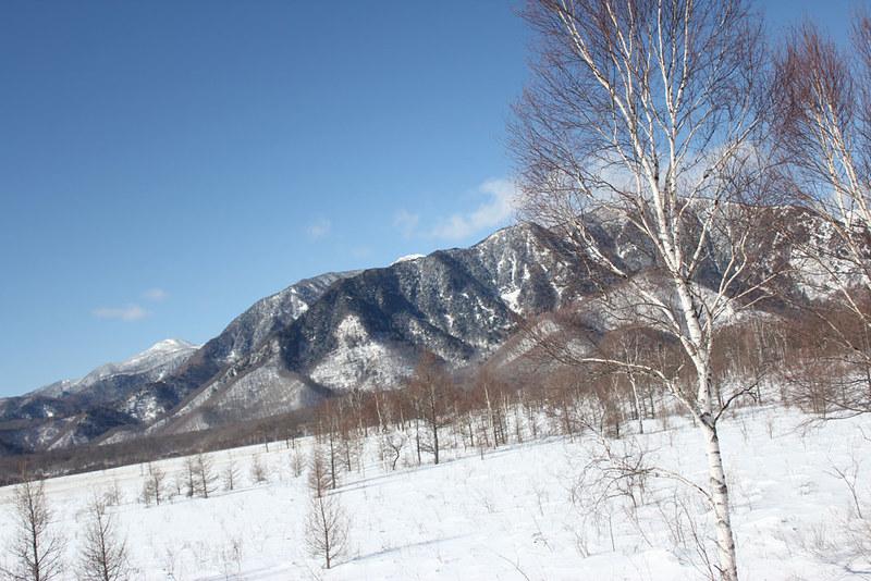 20140112_戦場ヶ原_0007