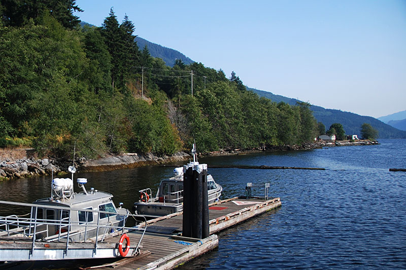 Jeune Landing at Port Alice, Neroutsos Inlet, Vancouver Island, British Columbia, Canada