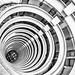 Circles of Life by Daniel Borg