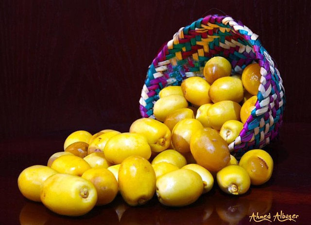 Khelas Dates , The most delicious dates in Bahrain                                                             رطب الخلاص ، أشهى الرطب البحـــريني