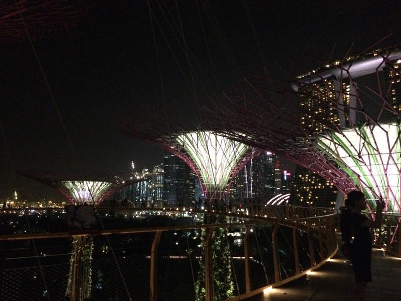 Tang, Christine; Hong Kong - A Perfect Mix of City and Nature (5)