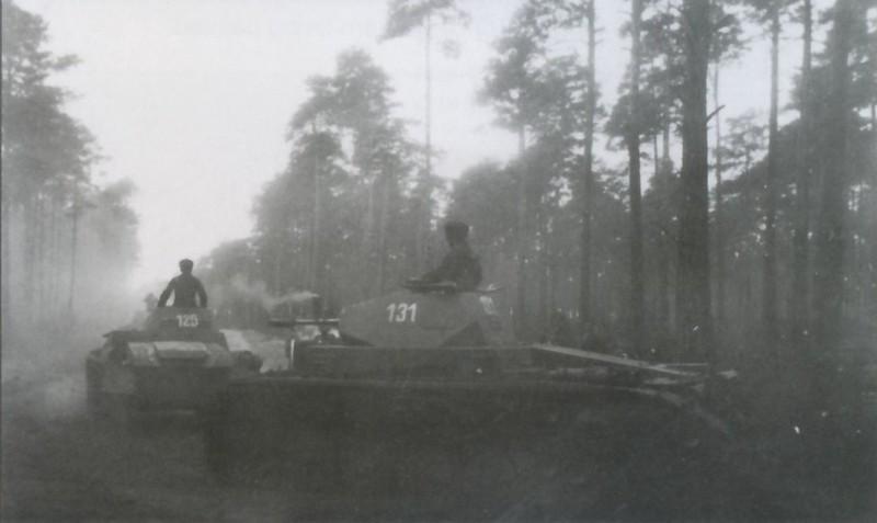 PzKpfw II (8)