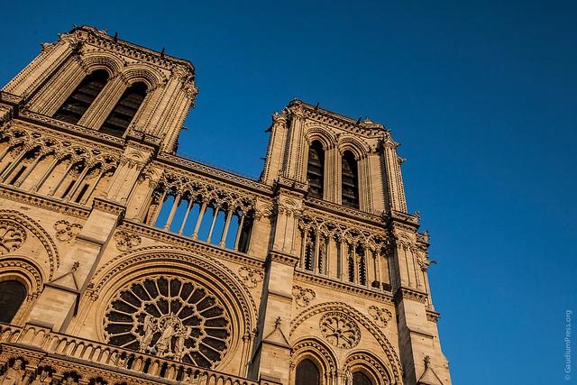 Esplendores de Piedra y de Gloria: Notre Dame y su Fachada