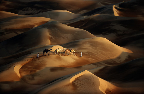 UAE-CAMEL-DESERT-NATURE-TOURISM | by Globovisión