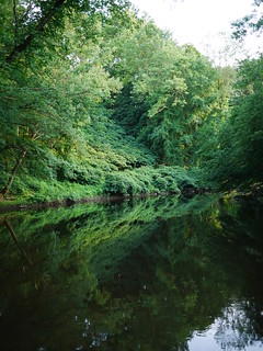 green reflections in the passaic river | by Keithius