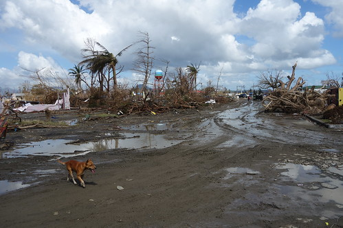 Path of destruction 2 Tacloban 15 Nov | by DFAT photo library