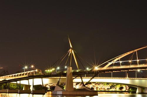 Goodwill Bridge spike   by Aussie Dave B