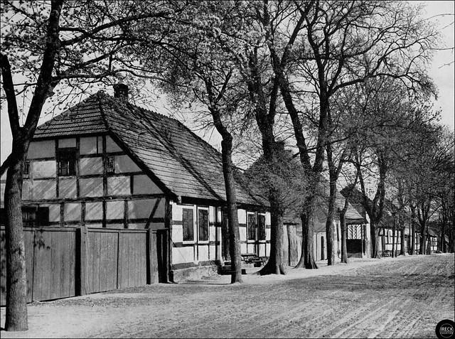 Aus einem friderizianischen Straßendorf im Oderbruch, Kotlina Freienwaldzka - mitteldeutsche Gehöfte
