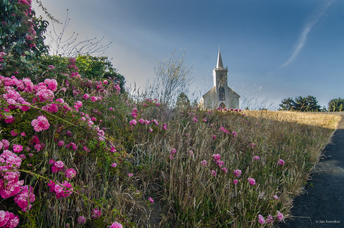 california ca usa flower church weather northerncalifornia sunrise dawn us unitedstatesofamerica sunny bodega northamerica sonomacounty landscapephotography architecturephotography