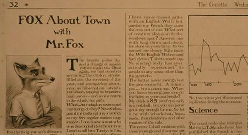 fantastic mr. fox.   by mariell øyre