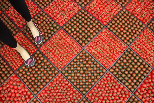tomato floor tiles!