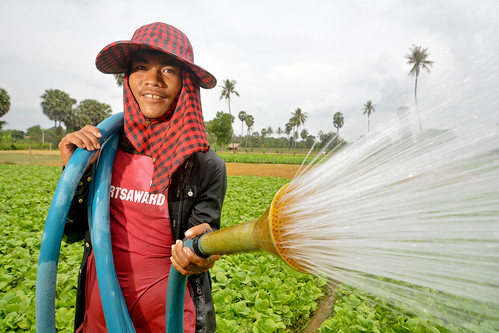 Use of groundwater for irrigation in Kandal Province, Cambodia.