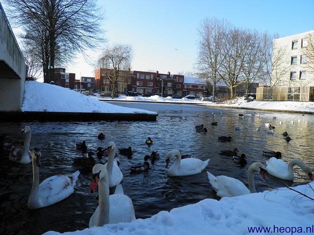 16-01-2013 Blokje wandelen 7.5 Km (3)
