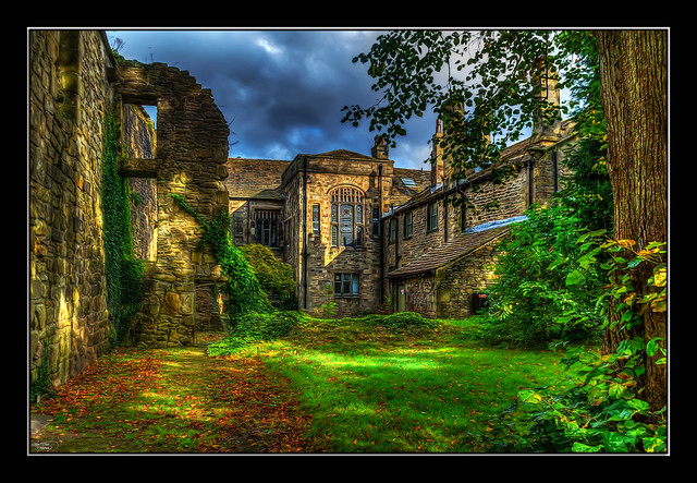 Autumn Leaves in Whalley Abbey