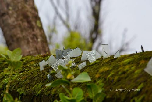 A few broken memories preserved... | by vishy_rana