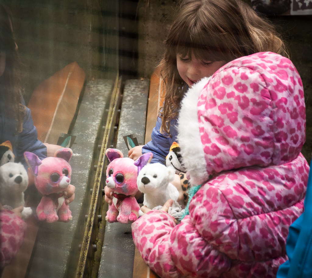 Stuffies Visiting Animals