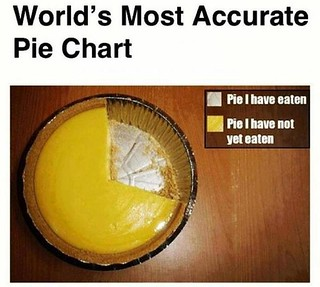 PIE Chart Most accurate | by jan4insight