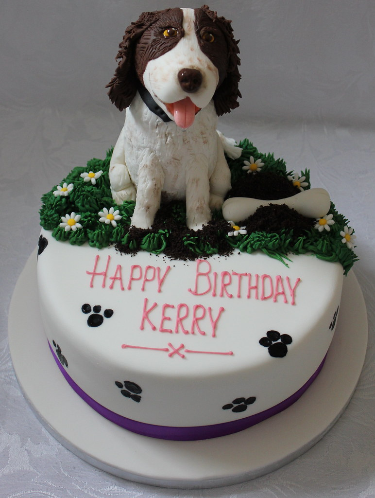 Surprising Pet Dog Birthday Cake Pauls Creative Cakes Flickr Personalised Birthday Cards Veneteletsinfo