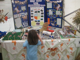 IOW County Show School Displays
