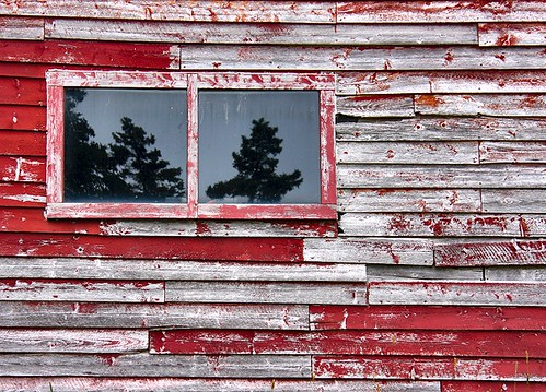 wood old red reflection window barn newfoundland wooden paint painted weathered nfld randomisland