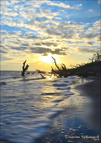 longexposure sun reflection beach clouds sunrise landscape driftwood hdr cloudysky partlycloudy jacksonvillefl bigtalbotisland nikond5100