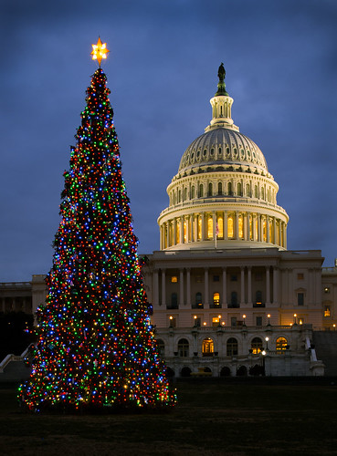 2013 U.S. Capitol Christmas Tree | by USCapitol