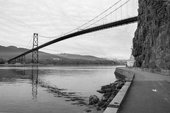 The Lions Gate Bridge (_K3_1863)