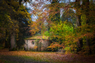 Little House in the Woods | by Christopher Combe Photography