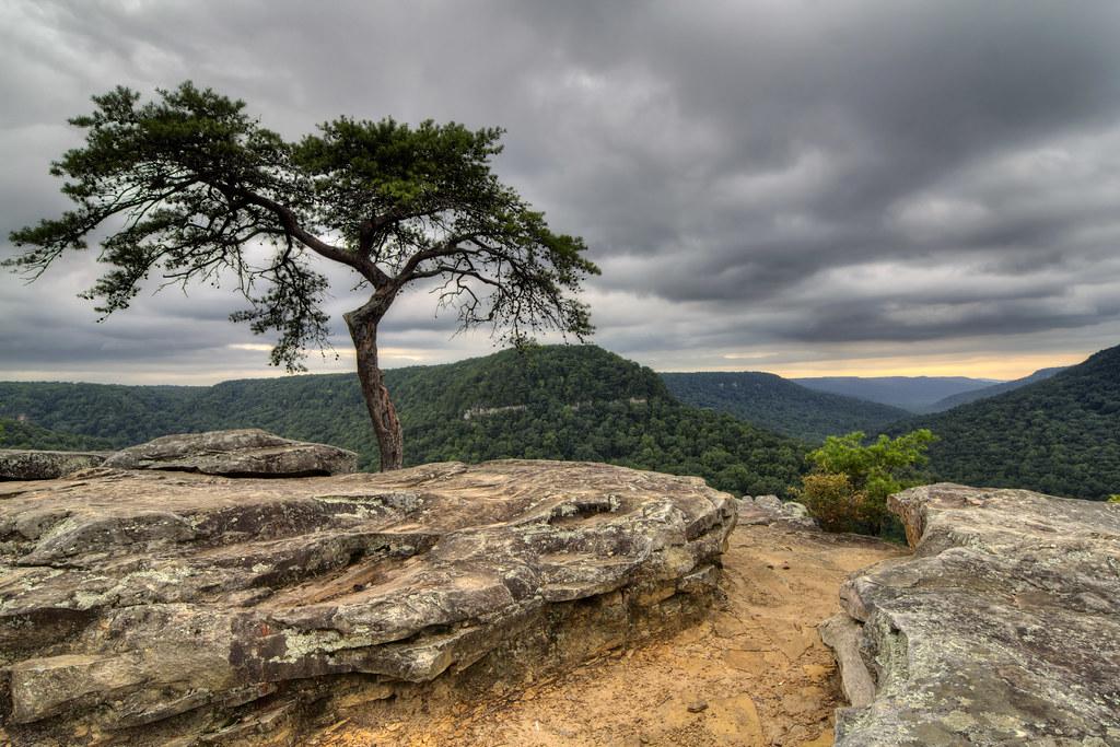 Buzzard's Roost, Fall Creek Falls State Park, Van Buren County, Tennessee 1