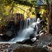 Samuel Forsyth- Boulder Creek Path