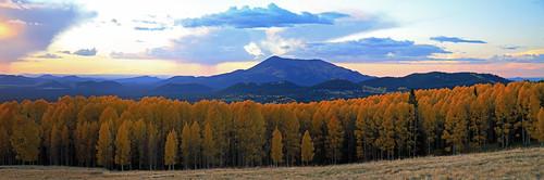 arizona autumn aspens fall leaves flagstaff usa clouds evening landscape mountain peak snowbowl