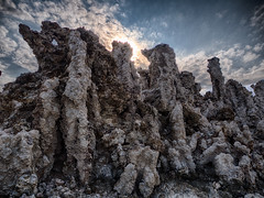 Mono Lake-backlit tufa