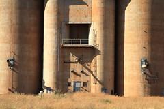 silo shadows, barellan