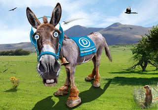 Democratic Donkey - Caricature | by DonkeyHotey