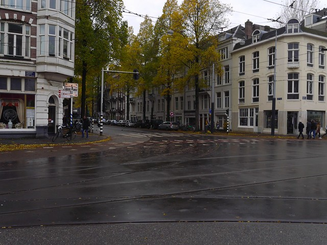 Free photo of Amsterdam: picture of the Plantage Middenlaan with light rain, in Fall', The Netherlands