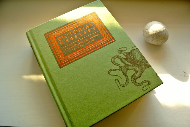 Pictorial Webster's: A Visual Dictionary of Curiosities By Johnny Carrera