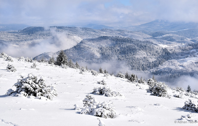 The beautiful mountain winter view