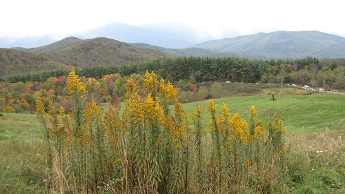 autumn mountains outdoors october hiking northcarolina madisoncounty pisgah maxpatch 2013