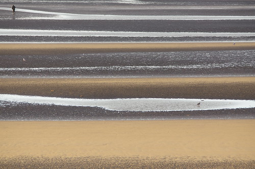 Winter Morning at Camber Sands   by Motapics