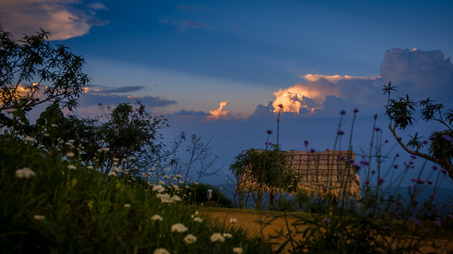 2013-11-14 Thailand Day 07, Mae Rim District, Chiang Mai   by Qsimple, Memories For The Future Photography