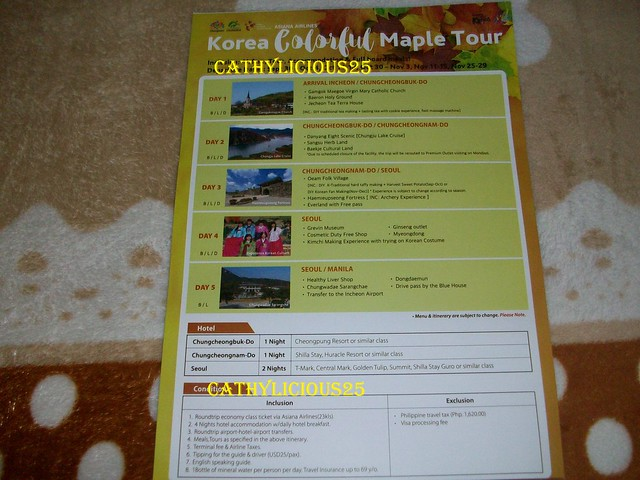 25th Filipino- Korean Cultural Festival