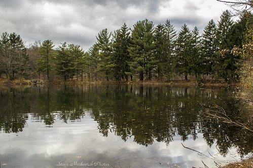 smack53 westmilford newjersey palpond melodylake lake pond water reflections trees pine pinetrees clouds cloudy autumn latefall lateautumn autumnseason fallseason scenic scenery outdoors outside nikon d3100 nikond3100