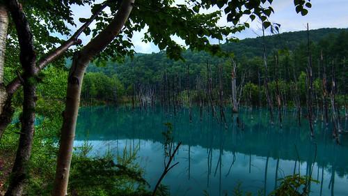 park morning blue summer sky sun japan pond hokkaido view cannon biei hdr furano magiclantern 美瑛 富良野 eos60d saikachi 青い池 n43cd