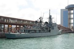 marinero (5)