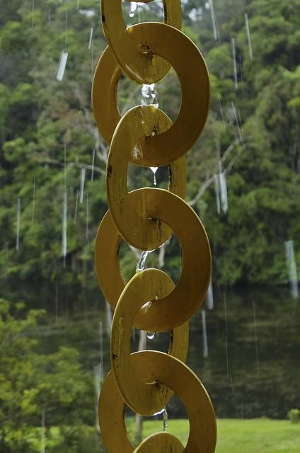 A chuva e os elos (série com 4 fotos)  //  Rain and links (series with 4 photos)