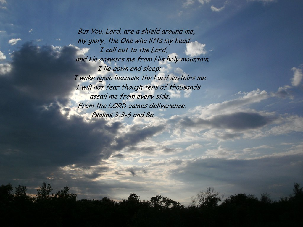 Psalms 3:3-6 and 8a | I decided to put my very first picture