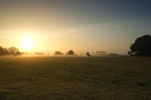 weatherproject hoogledegits sunrise sun blu sky fog day hooglede