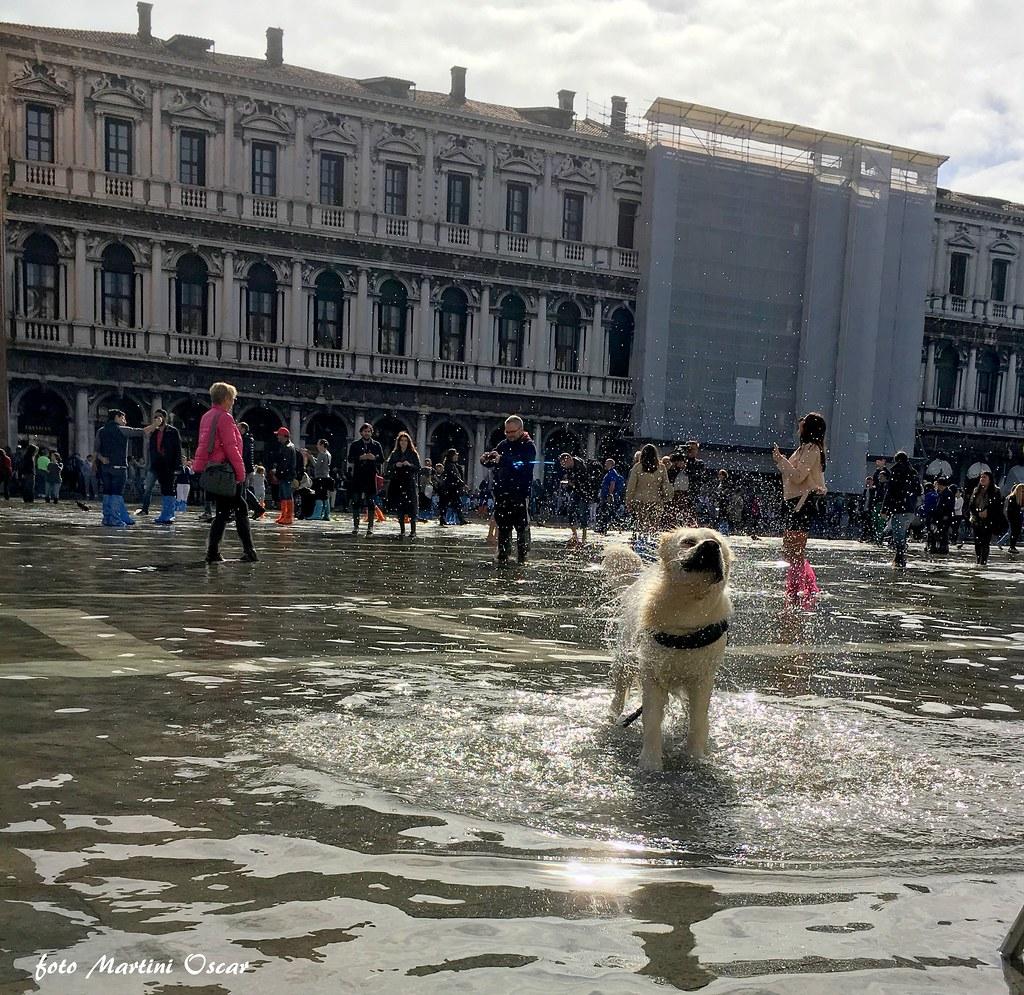 Dea a Venezia
