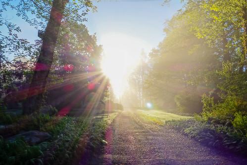 sunrise connecticut newengland ct hdr ridgefield fairfieldcounty takoratrail sonydscrx100