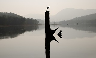 Heron's mirror | by nandadevieast